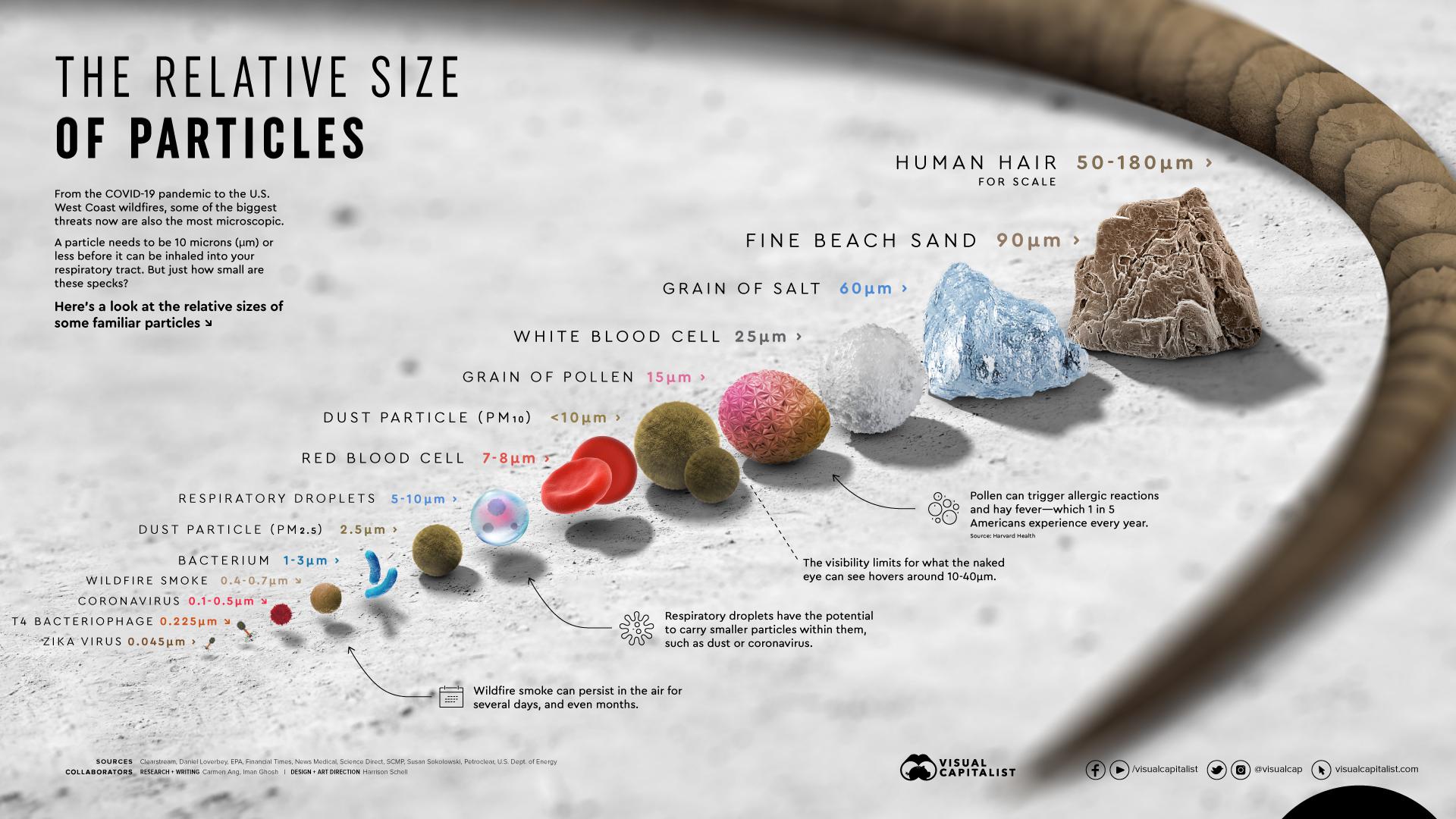 tamaño particulas virus